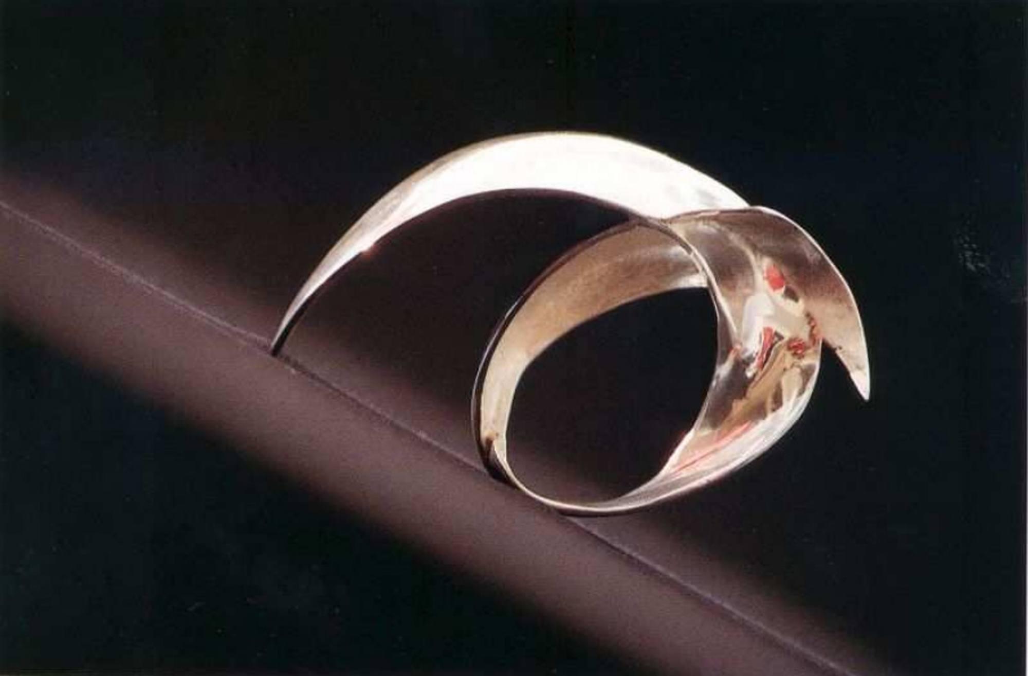 Le prix est une sculpture en argent représentant des trajectoires de particules près d'un trou noir métrique Kerr en rotation.
